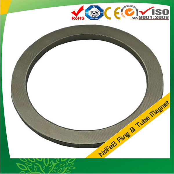 Big Ring Rare Earth Neodymium Magnets