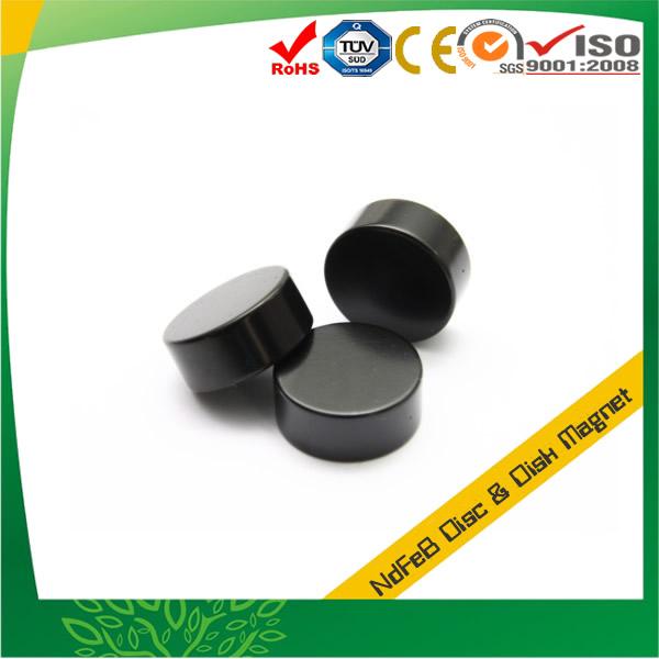 Rare Earth Disc Magnet