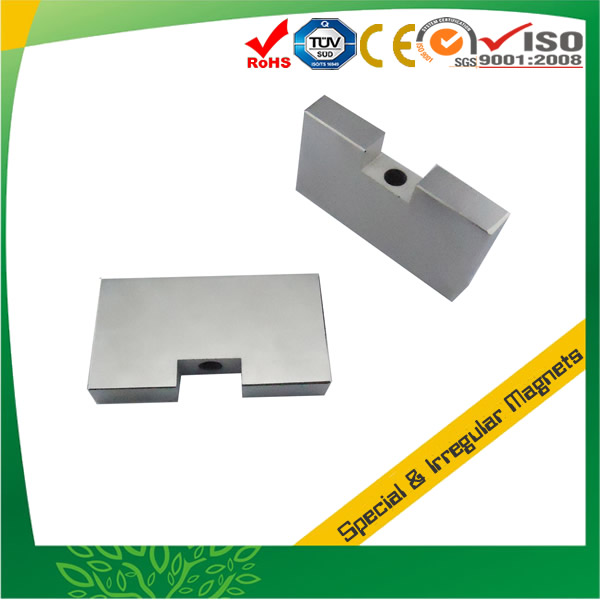 Irregular Rare Earth Neo Magnet