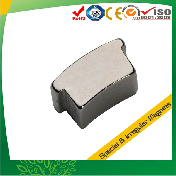 Irregular Shaped Customized NdFeB Magnet