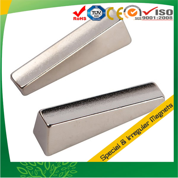 Rare Earth Neodymium Irregular Magnet
