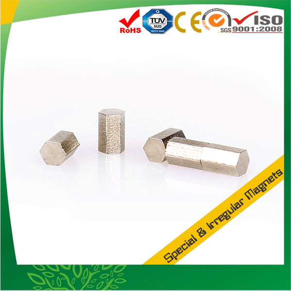 Rare Earth Special Neodymium Magnets