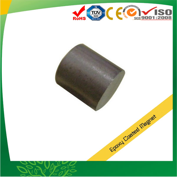 Parylene Coated Sintered NdFeB Magnets