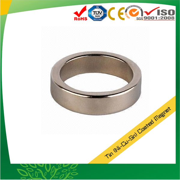 Tin Coating Sintered Neodymium Magnets