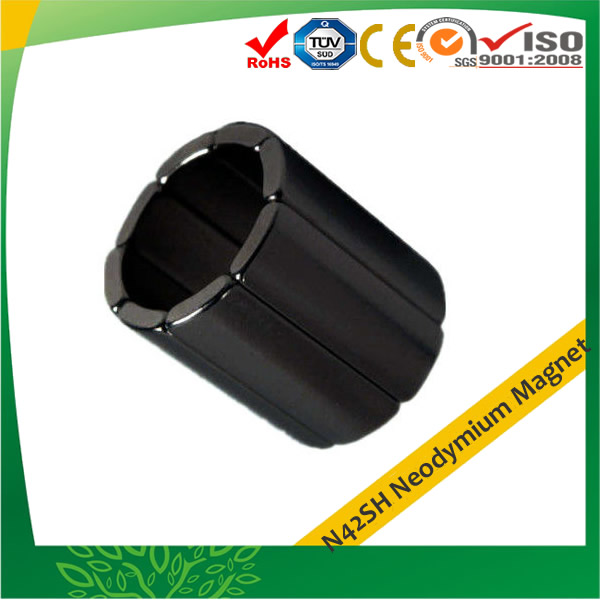 42SH Material Epoxy Coated Neo Magnets