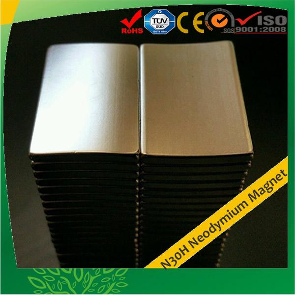 Rare Earth Segment Neo Magnet N30H