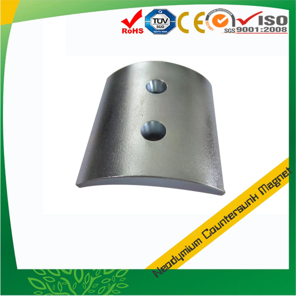 Customized Countersunk Motor Magnet
