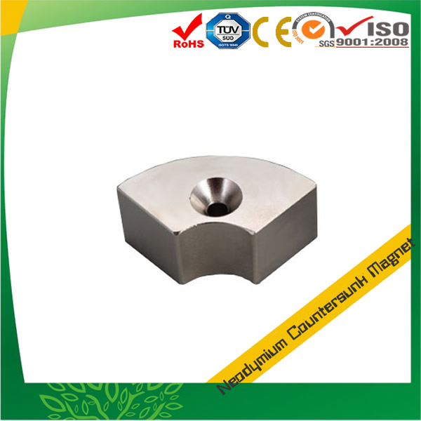 Rare Earth Segment Countersunk Magnet